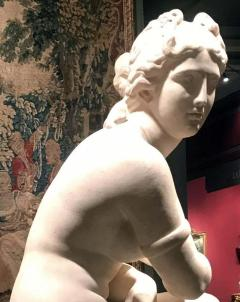 Extraordinary Italian 19th Century Marble Statue of Aphrodite - 1527648