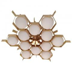 Fedele Papagni Limited Edition Flush Mount Chandelier by Fedele Papagni for Gaspare Asaro - 53541