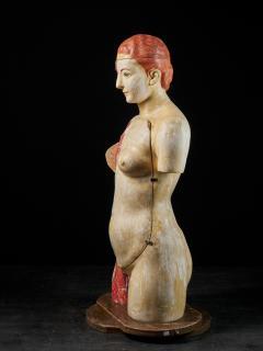 Female Life size Anatomical corche Torso Model Shimadzu Company - 2000306