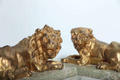 Fine Pair of Gilt Bronze Lion and Lioness on Marble Bases Italy - 364654