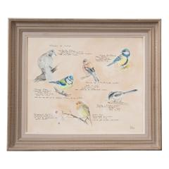 Framed French Vintage Aviaire Watercolor - 1409704