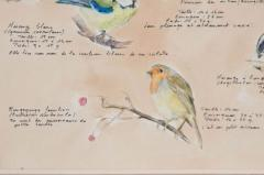 Framed French Vintage Aviaire Watercolor - 1409739