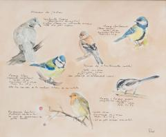 Framed French Vintage Aviaire Watercolor - 1409957