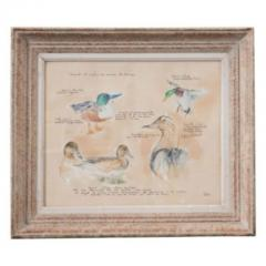Framed French Vintage Canard Watercolor - 1409749