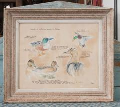 Framed French Vintage Canard Watercolor - 1409750