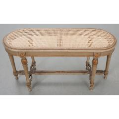 French 19th Century Painted Cane Bench - 2057209