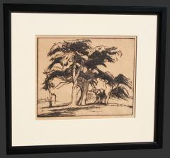 Gene Alice Geneva Glasier Kloss Old Cypress Tree - 227690