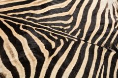 Genuine Zebra Rug - 899943