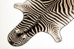 Genuine Zebra Rug - 899947