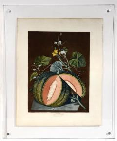 George Brookshaw A Pair of Melons - 763612