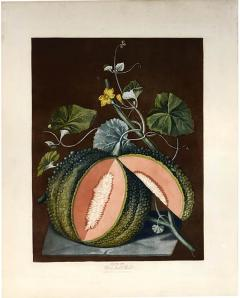 George Brookshaw A Pair of Melons - 764259