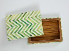 Green Natural Bone Cheveron Box - 1576359