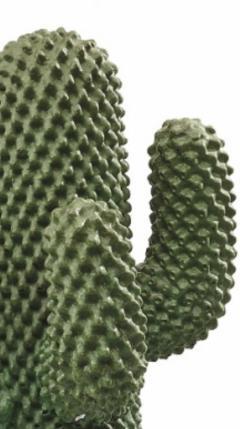 Guido Drocco Cactus Floor Coat Hanger by Guido Drocco Franco Mello - 1719178