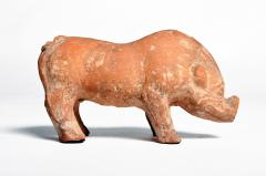 Han Dynasty Figure of a Pig - 1651224