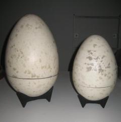 Hans Hedberg Giant Hans Hedberg Ceramic Egg Boxes - 602894