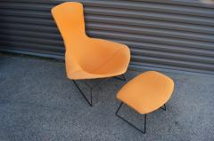 Harry Bertoia Bird Lounge Chair and Ottoman by Harry Bertoia for Knoll - 1687377