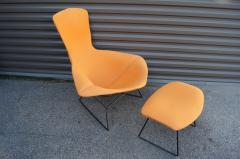 Harry Bertoia Bird Lounge Chair and Ottoman by Harry Bertoia for Knoll - 1687379