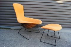 Harry Bertoia Bird Lounge Chair and Ottoman by Harry Bertoia for Knoll - 1687381