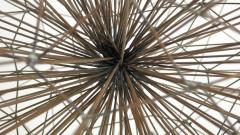 Harry Bertoia Harry Bertoia Style Dandelion Sculpture - 1262002