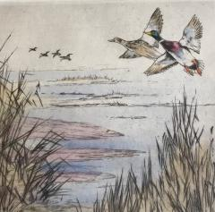 Henry Wilkinson Duck Shooting  - 1309593