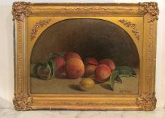 Hiram Dwight Torrey Peaches - 842194