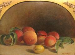 Hiram Dwight Torrey Peaches - 842195