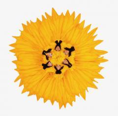 Howard Schatz Fashion Flowers Sunflower - 1148176