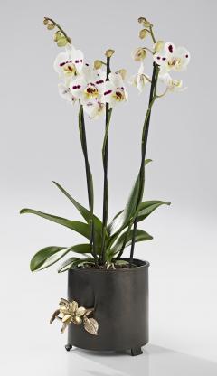 Hubert Le Gall Cache Pot Flora - 907352