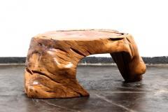 Hugo Franca Guar s Coffee Table by Hugo Fran a - 1233304