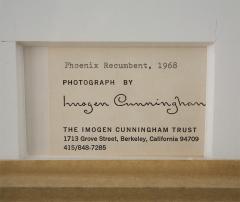 Imogen Cunningham Framed Silver Print from Original Negative by Imogen Cunningham - 247829