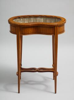 Inlaid satinwood vitrine table - 1372972