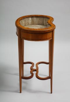 Inlaid satinwood vitrine table - 1372977