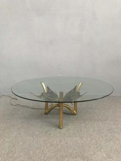 Jacques Duval Brasseur Brass Butterfly Coffee Table Attributed to Jacques Duval Brasseur - 1562152