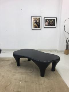 Jacques Jarrige Toro Coffee Table with Matte finish - 1412217