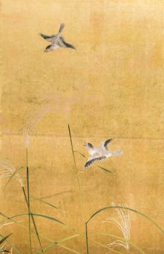 Japanese Four Panel Screen Autumn Flowers - 1631391