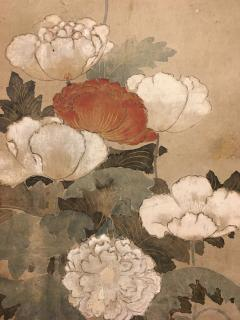 Japanese Scroll of Poppies - 748047