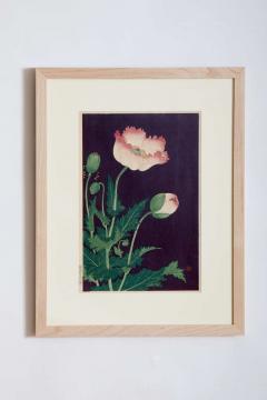 Japanese Showa Botanical Print of Poppies - 1215834