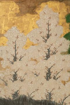 Japanese Six Panel Screen Hawk with Ancient Pine - 1771274