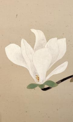 Japanese Two Panel Screen Pink and White Magnolias In Early Bloom - 1564229