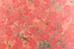 Japanese Two Panel Screen Red Plum Rare Obara Paper Art Screen - 1905851