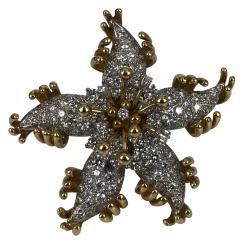 Jean Michel Schlumberger Schlumberger Star brooch - 1179004