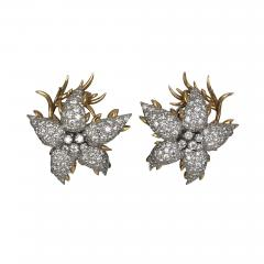 Jean Michel Schlumberger Schlumberger star earrings - 1179090