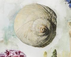 Jeffrey Ripple Shells Butterflies and Flowers - 692537