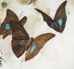 Jeffrey Ripple Shells Butterflies and Flowers - 692543