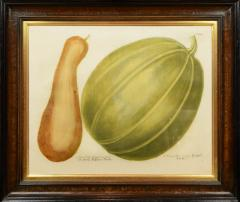 Johann Wilhelm Weinmann Set of Four Gourds - 781421