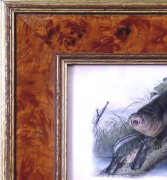 John James Audubon John James Audubon Canada Otter 1849 - 1555384