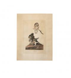 John James Audubon Monumental Framed Audubon Print of The Little Owl 1834 Havell Edition - 602475