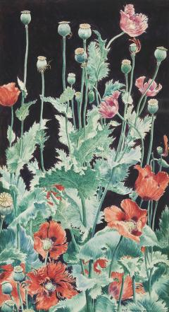 John Rutherford Boyd Shirley Poppies - 969577
