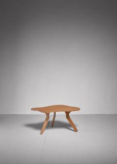 Jos Zanine Caldas Jos Zanine Caldas free form plywood coffee table Brazil 1950s - 835307