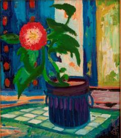 Joseph Barrett Begonia  - 1198230